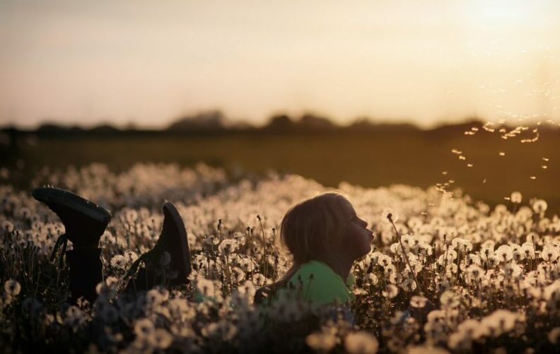 air quality - dandelion child